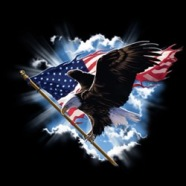 Image - Eagle & Flag