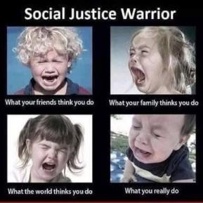 Social Justice Warrior 2