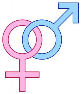 Male v. Female
