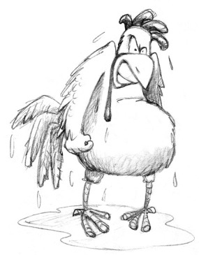 Angry Wet Chicken