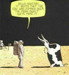 Cow and Moon Joke